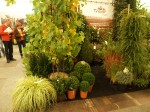 Expozitia Internationala GrootGroenPlus 20