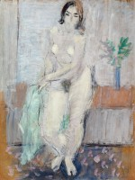 01 Alexandru Ciucurencu, Nud In Interior